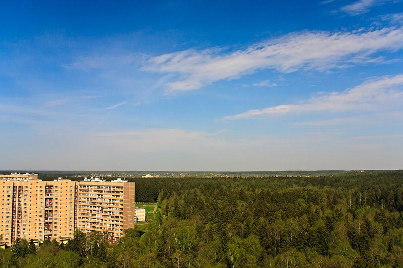 Вид на лес за Зеленоградом