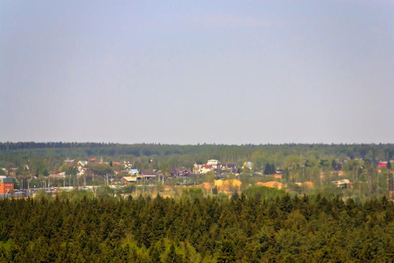 Вид на лес в сторону Алабушево