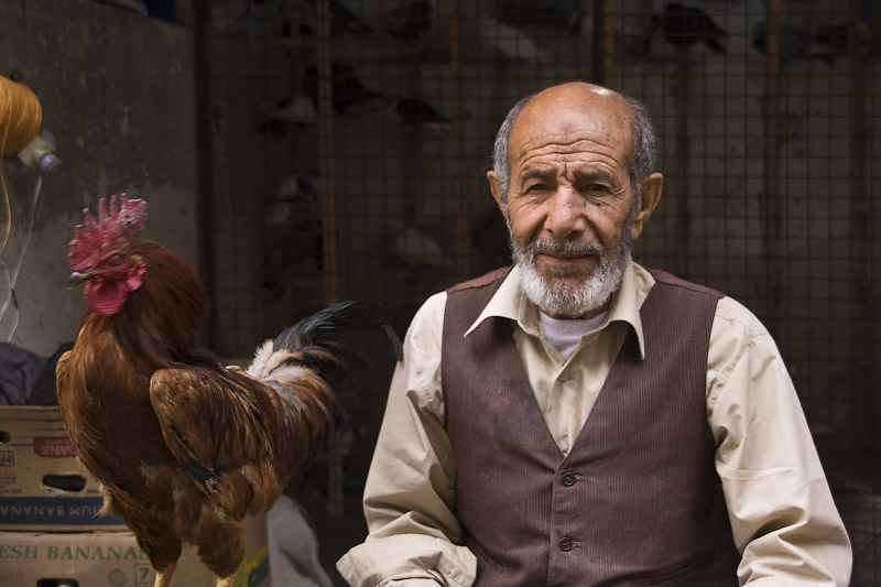 Продавец куриц